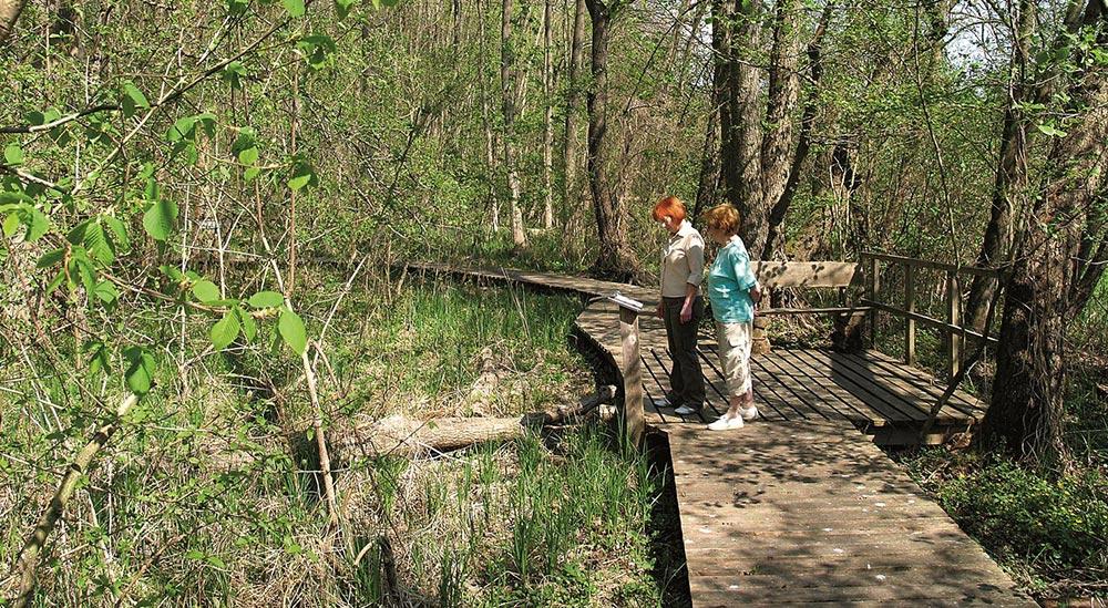 Spring adventure path, photo: B. Schubert